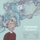Funkware - Future In The Past (Original Mix)