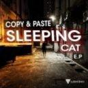 Copy & Paste - 70's Baby (Original Mix)