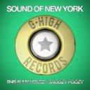 Sound Of New York - Snoozy Poozy (Original Mix)