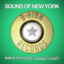 Sound Of New York - This Is My House (Original Mix)