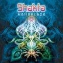 Shakta - Amber Mantra (Original mix)