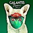 Galantis - Runaway (U & I) (Nats Remix)