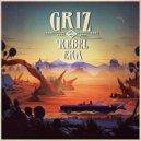 Griz - Hard Times (Original mix)