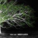 Max Cue - Mindfulness (Original Mix)