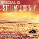 Special Q - Stellar Journey