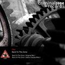 Flex - Back To The Zone (Valerio Panizio Rmx)