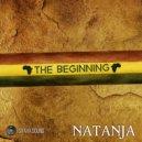 Natanja - I Will Survive (Original mix)