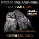 Dj Yakeen - Now or never (Original Mix)