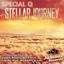 Special Q - Stellar Journey (David Kust Stellar\'s House Remix)