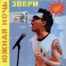 Звери - Южная ночь (DJ Solovey Remix)