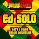 Ed Solo - Here I Come (Instrumental mix)