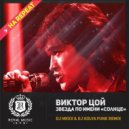 Виктор Цой - Звезда по имени Солнце (DJ Mexx & DJ Kolya Funk Radio Remix)