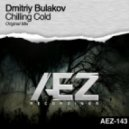 Dmitriy Bulakov - Chilling Cold (Original Mix)