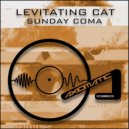 Levitating Cat - Sunday Coma