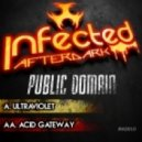 Public Domain - Acid Gateway (Original Mix)