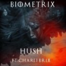 Biometrix  - Huch Ft Charli Brix (Original mix)