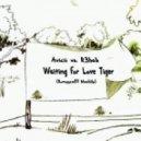 Avicii vs. R3hab - Waiting For Love Tiger (Romyyca89 MashUp)