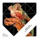 Drop Out Orchestra - Shelldub (Original Mix)