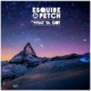 Jolyon Petch, eSquire - What You Got For Me (Original Mix)