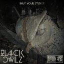 Bl4ck Owlz - Fonk-E (Original mix)