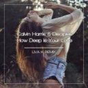 Calvin Harris & Disciples - How Deep Is Your Love (Liva K Remix)