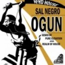 Sal Negro - Ogun (Meeting of the Tribe Boom Mix)