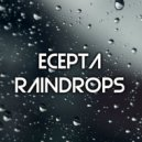 Ecepta  - Raindrops (Original mix)