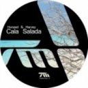 Harvey & Hunzed - Cala Salada (David Mayer Remix)