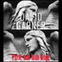 David Garner - Parle Moi Mon Ange (Original Mix)
