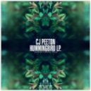CJ Peeton - Valley Of Peace (Original Mix)