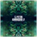 CJ Peeton - Quantum (Original Mix)