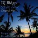 DJ Bidgo - Stayin Alive (Original Mix)
