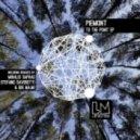 Piemont - To The Point (Original Mix)