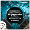 Sumo Blanco, Nathan J - All I Wanna Be (feat. Lokka) (Nathan J Summer Edit)