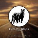 Spy89 - Endless Roads (Original Mix)