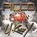 Picco - You Know Why (Original Mix)