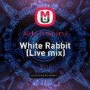 Aleks Prokhorov - White Rabbit (Live mix)