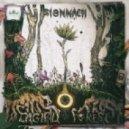 Sionnach - Cenlie Na Draoithe (Original mix)
