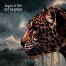 Jaques Le Noir - Into The Groove (Elektromekanik Remix)