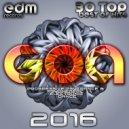E-view, Rishi - Flower Power (Rishi Remix)