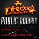 Public Domain - Auto Acid Road Trip (Original Mix)