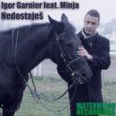 Igor Garnier - Nedostajes