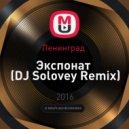 Ленинград  - Экспонат (DJ Solovey Remix)