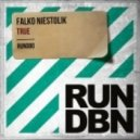 Falko Niestolik - True (Original Mix)