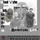 Steal Vybe Ft. Rich Medina - Spiritual Life (Original Mix)