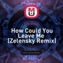 Da Buzz - How Could You Leave Me  (Zelensky Remix)