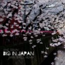 Ane Brun - Big In Japan (Ivan Spell Radio Mix)