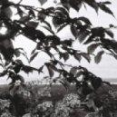 Ikotu feat. Dan Webster - Malachite (Original mix)