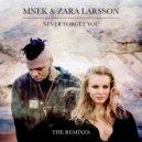 MNEK feat. Zara Larsson - Never Forget You (Fabrix Remix)