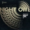 Velocity - Night Owl (Original mix)